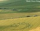 cc julia stonehenge