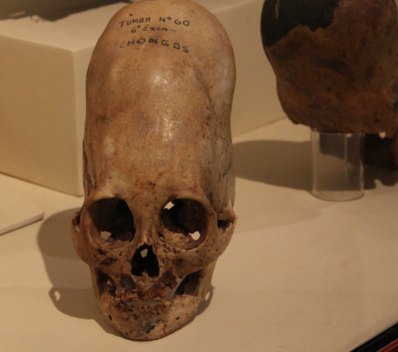 ica elongated skulls