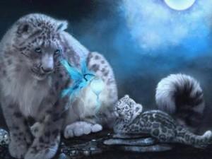 celestial animal prayer